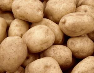 kentang-busuk-300x234